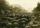 Photo-Ros Paris. Manifestación de excombatientes en los Campos Elíseos de París el 3/9/1927. París. Gelatina argética. 1927