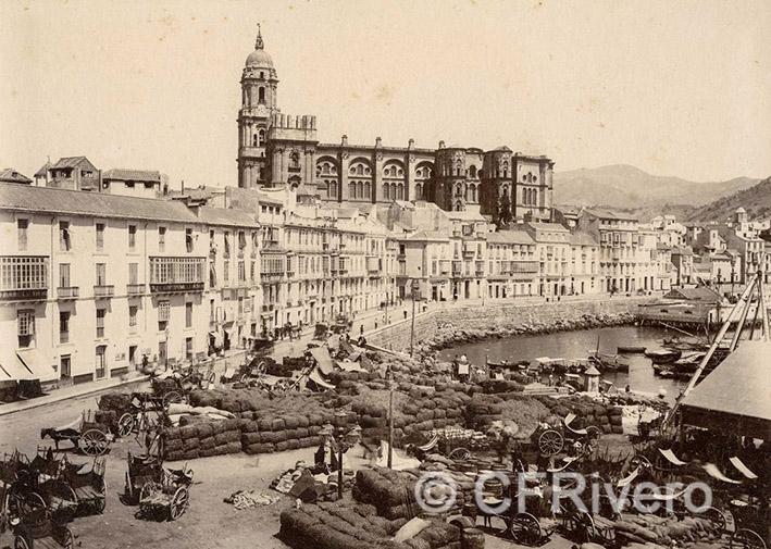 Autor desconocido Málaga, la Cortina del Muelle y el Puerto desde alguna azotea próxima al Cuartel de la Parra Ca. 1880. Albúmina