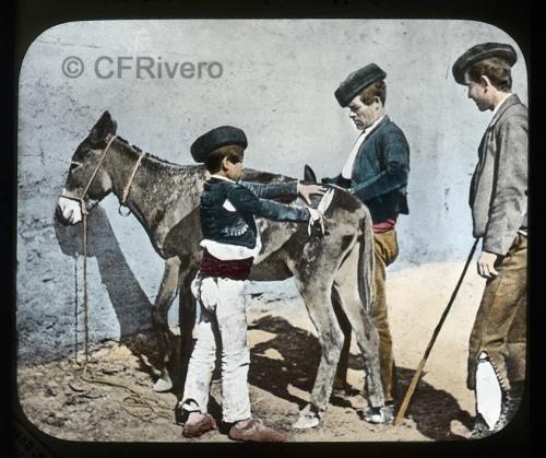 Jean Laurent. Grenada. Gypsies clipping mules. Edición de Georges Washington Wilson. Placa de vidrio linterna mágica en colodión positivo iluminado. h. 1870 (CFRivero)