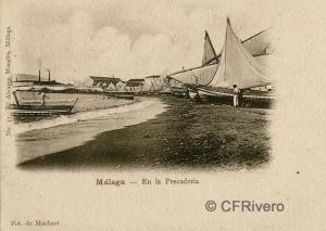 Sabina Muchart. Málaga, en la Pescadería. Tarjeta postal ed. R. Álvarez Morales. H. 1901. (CFRivero)