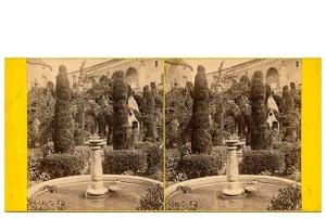 280. Frank Good. Tarragona, la Catedral. Vista del jardín del Claustro. Estereoscopia en albúmina. 1869
