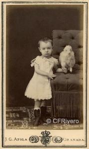 José García Ayola. Niño con ovejita. Granada h. 1870. Carte de visite en albúmina (CFRivero)