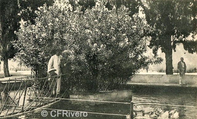Lacoste ed. 11 Málaga.- El Retiro - Estanque de la adelfa. Ca. 1910. Tarjeta postal. (CFRivero)