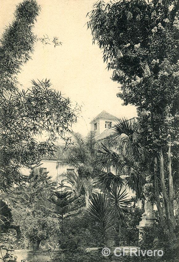 Lacoste ed. 19 Málaga.- El Retiro - El cañaveral. Ca. 1910. Tarjeta postal. (CFRivero)
