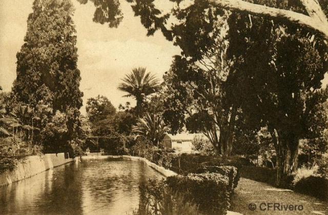 """Autor desconocido. Málaga.- """"El Retiro"""". Estanque Grande. Ca. 1920. Tarjeta postal."""