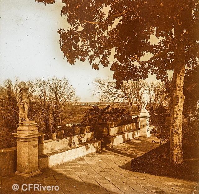 Jacinto Ruiz del Portal. Retiro, parterre [Jardín patio. Churriana, Málaga]. 1925. Par de una estereoscopia positiva en vidrio 45x110 mm. (CFRivero)