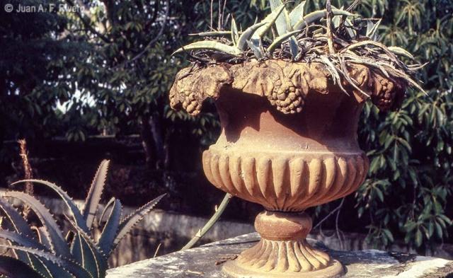 Juan Antonio Fernández Rivero. Vaso de terracota con adorno de viña. Málaga, El Retiro. 1986. CFRivero.