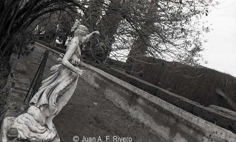 Fig. 17: Juan Antonio Fernández Rivero. Málaga, el Retiro, estatua de Hebe en la Ría. 1986 (CFRivero)